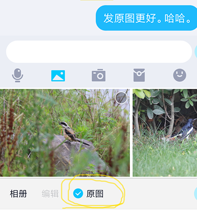 Screenshot_2019-06-22-20-35-14-743_com.tencent.mobileqq.png