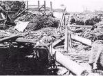 建国以来在宁波登陆的台风有几个?迄今最大的一次台风灾害是哪个?